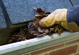 gutter cleaning Southern Maryland